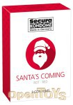 Secura Kondome - Santas Coming - 3er Pack (Secura)